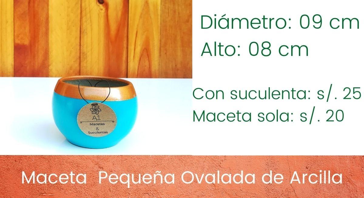 Maceta Pequeña Ovalada de Arcilla - Colores: Dorado - turquesa