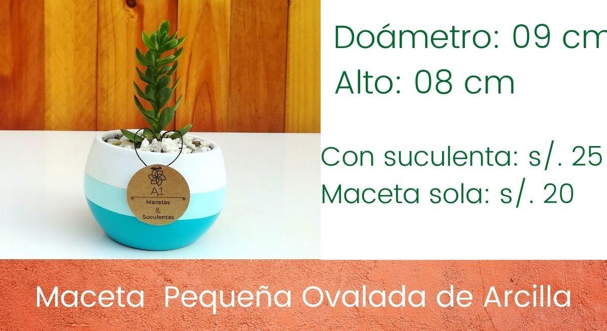 Maceta Pequeña Ovalada - Colores: Blanco - celeste - turquesa