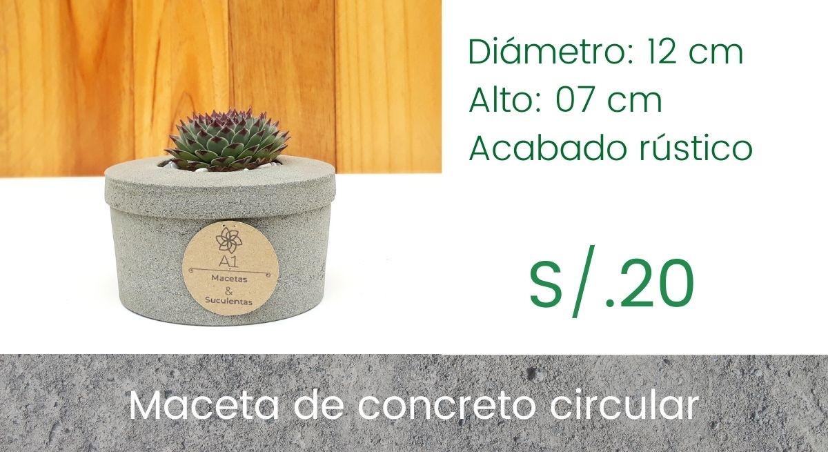 Maceta Circular - Echeveria