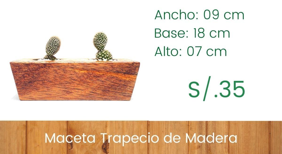Maceta Trapecio - Modelo Bajo