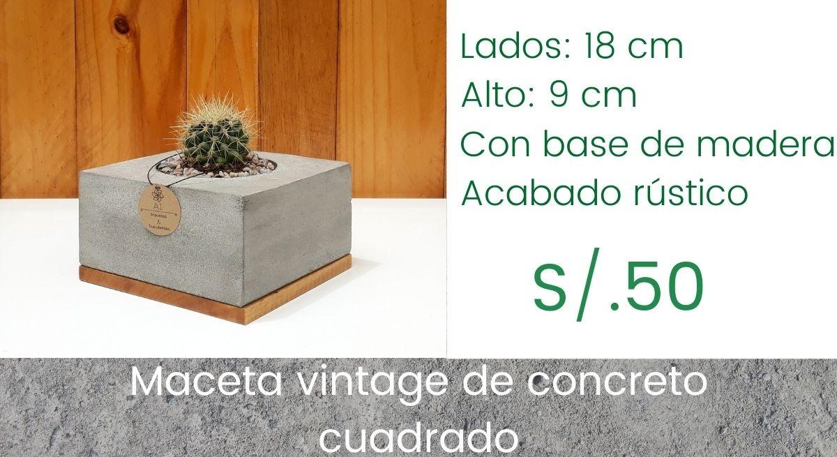 Maceta Vintage Cuadrada - Captus Redondo