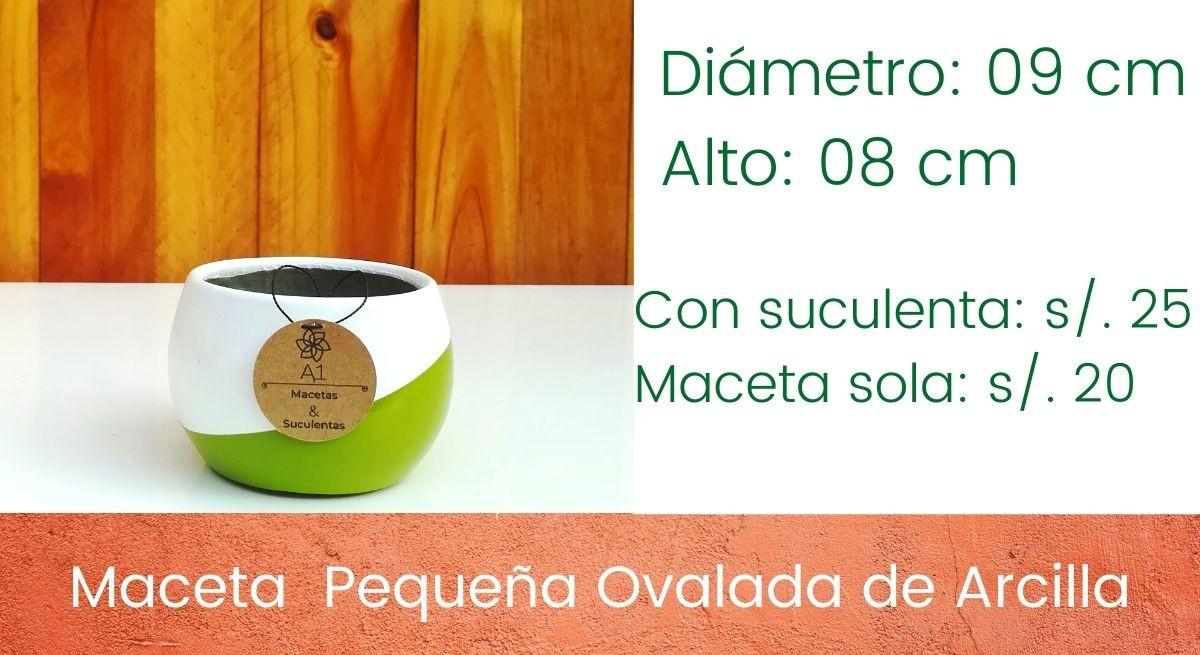 Maceta Pequeña Ovalda de Arcilla - Colores: Blanco - verde limón